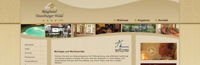 "Wellness im Hotel ""Teutoburger Wald****"" (200 m)"